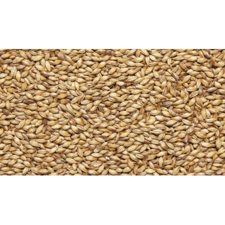 Солод карамельный  50 - 1 кг